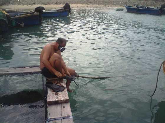 渔民潜水捞珊瑚
