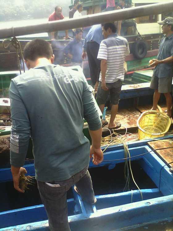忙碌的海鲜船1