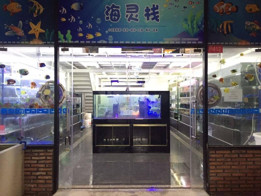 广州海灵栈水族